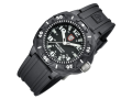 Luminox Night View 0201 Sentry